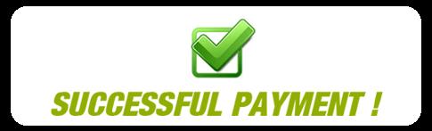 success_payment Cairo Web Design
